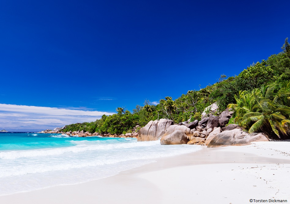 Travel & joy seychelles